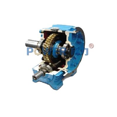 替代进口蜗轮蜗杆齿轮箱